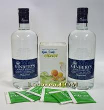 GINBERY'S 2 Botellas + GinTonic Cítrico